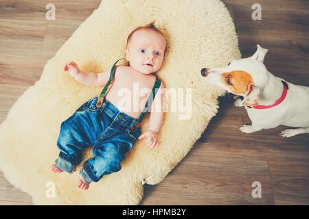Little boy and dog at home. Adorable baby resting on the fur blanket. - Stock Image