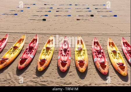 Canoes and oars on beach - Stock Image
