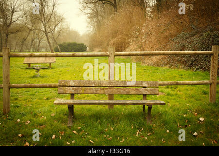 Benches in a park. - Stock Image