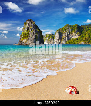 Tropical beach with turquoise see and blue sky - Stock Image