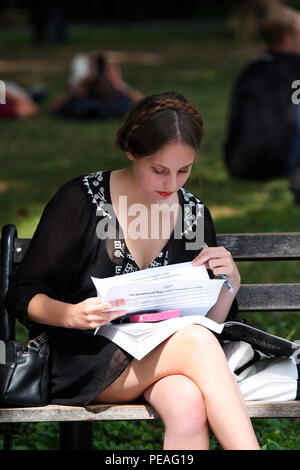 NEW YORK, NY - SEPTEMBER 05: Young white woman studying a book while sitting on a bench in Washington Square Park, Manhattan on September 5, 2016 in N - Stock Image
