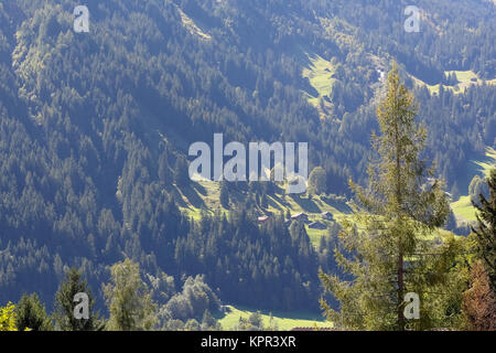 The slope on which a dense and dark forest grows and there you can see small meadows, huts and houses and all this - Stock Image