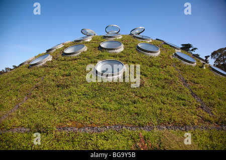 The Living Roof at the California Academy of Sciences, Golden Gate Park, San Francisco, California, USA - Stock Image