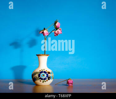 Abstract still life displaying dead, dried, dry roses in ceramic pot against blue large background and copy space- passage of time, loneliness and dea - Stock Image