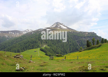 Green Meadow with yellow flowers and Muttener Horn, mountain in Switzerland. - Stock Image