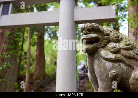 A-gyo komainu statue with tori gates in the background. The passage leads to Towada Shinto shrine. The lion-dog-like figures are meant to ward off evi - Stock Image