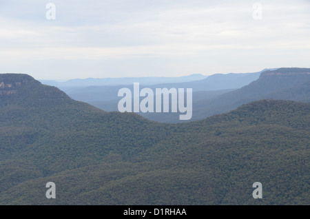 KATOOMBA, Australia - A valley in the Blue Mountains as seen from Echo Point in Katoomba, New South Wales, Australia. - Stock Image