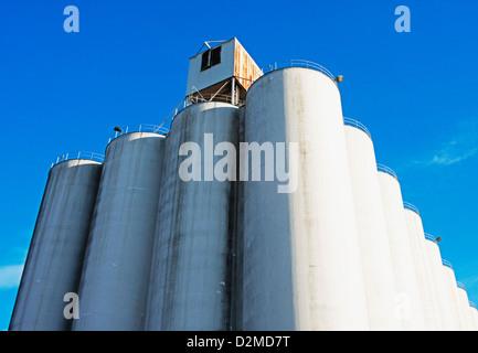 Detail of grain silos - Stock Image