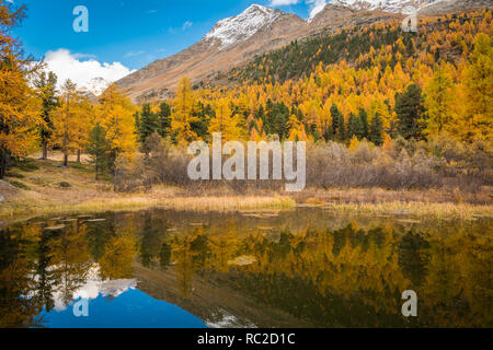 Dolomites Mountains, autumn landscape in the The Martello valley in South Tyrol in the Stelvio National Park, Alps, northern Italy, Europe. Beauty of  - Stock Image
