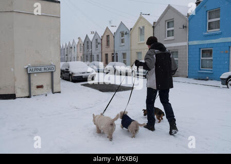 Hastings, East Sussex, UK. 27th Feb, 2018. UK Weather:  Walking the dogs with snow falling on aptly named Alpine - Stock Image