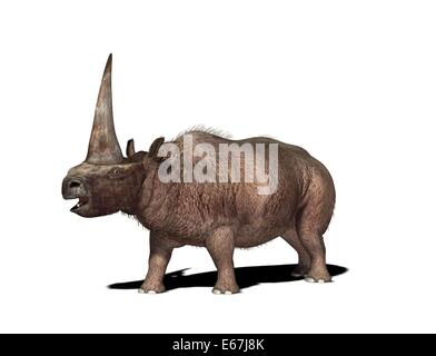 Elasmotherium / Elasmotherium - Stock Image