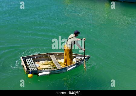 Fisherman standing up paddling a small rowing boat across St Ives Harbour,Cornwall,England,UK - Stock Image