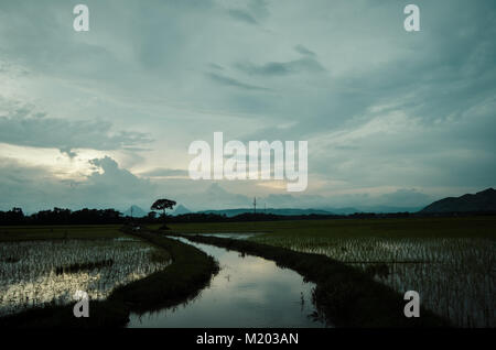 Beautiful sky at dusk in field and sky reflection in the water - Stock Image