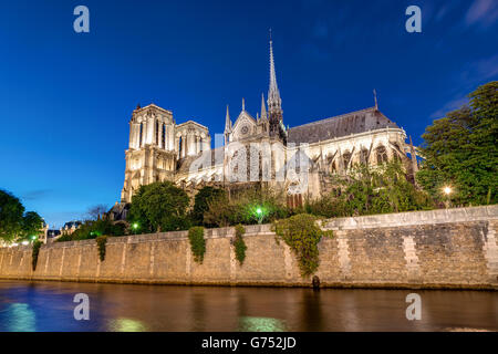 Notre-Dame and the River Seine in Paris at night - Stock Image