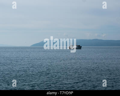 Small wooden fishing boat and seagulls on calm sea with island at background - Stock Image