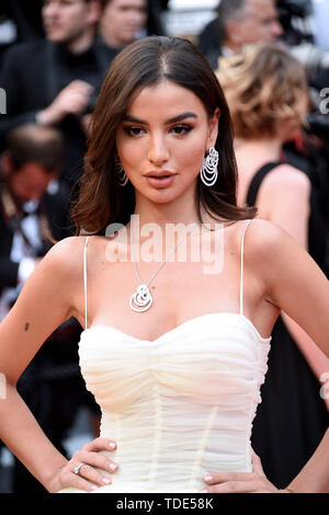 72nd Cannes Film Festival 2019 - The Dead Don't Die - Premiere - Red Carpet  Where: Cannes, France When: 14 May 2019 Credit: IPA/WENN.com  **Only available for publication in UK, USA, Germany, Austria, Switzerland** - Stock Image