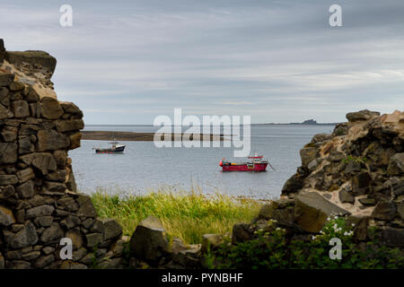 Two fishing boats at low tide in the Harbour of Holy Island of Lindisfarne with Bamburgh Castle through the Steel End ruins England UK - Stock Image