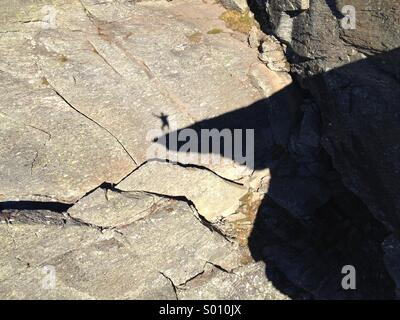 Man shadow dancing on Trolltunga, tyssedalen, Odda, Norway. - Stock Image