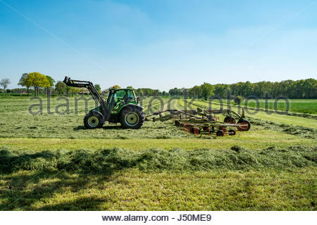 Tractor equipped with Liner 2900 double rotor hay rake and Stoll front loader harvests a field in northern Germany. - Stock Image