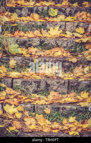 Autum leaves fallen on a stairway - Stock Image