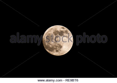 The Wolf moon rises over Fleet, Hampshire UK, later tonight there will be a total eclipse as the Earth passes between the Sun and the Moon. The eclips - Stock Image
