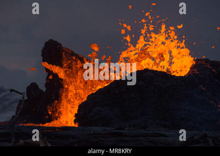 A molten lava fountain spews liquid magma hundreds of feet into the air at the Leilani Estates residential area from the eruption of the Kilauea volcano May 23, 2018 in Pahoa, Hawaii. - Stock Image