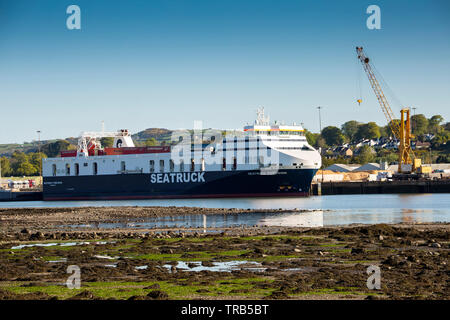 Ireland, Co Louth, Omeath, view across Carlingford Lough, Seatruck Precision moored in Warrenpoint Harbour - Stock Image