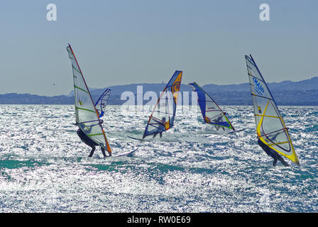 Windsurfers racing in the wind during a windy day - Stock Image