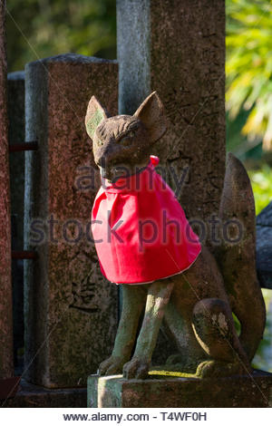 Statue of fox with red bib to expellee demons and illness, foxes are regarded as a messenger and they are often found at Shinto shrines dedicated to t - Stock Image
