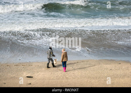 Dog walkers and their dog on the beach in Portreath in Cornwall. - Stock Image