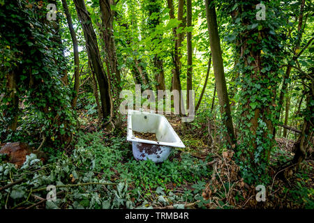 A discarded bathtub in the woods - Stock Image