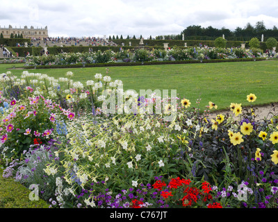 The Chateau of Versailles, Paris France. Flower beds, the Parterre, the fountains - Stock Image