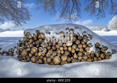 Stacked firewood in winter - Stock Image