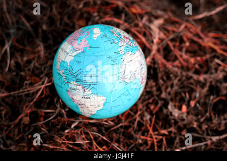 Blue and green globe of planet earth with a dry scorched dehydrated grass background. Copy space area for conservation - Stock Image