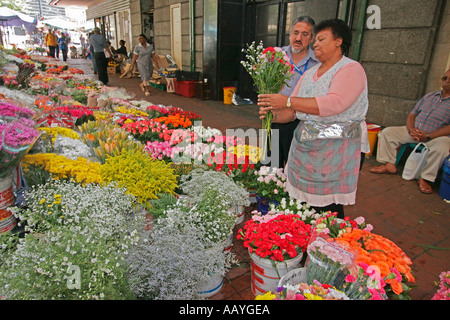 south africa cape town flower market - Stock Image