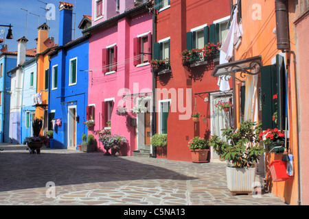 Colorful houses in Burano Island, Venice, Italy - Stock Image