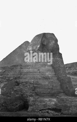 1950s, Egypt, a sphinx, remains of in the desert with pyramid behind. The Sphinx is a statue carved from limestne rock depicting a mythical creature, with body of alion and the head of a human. - Stock Image