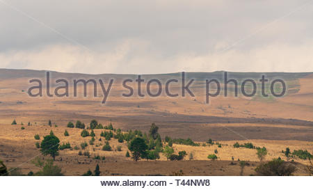 South African Countryside landscape in  Mpumalanga - Stock Image