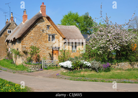 Thatched house, Down End/Bells Lane, Hook Norton, Oxfordshire - Stock Image