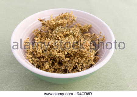 Dried elder flowers in a bowl with a green background - Stock Image