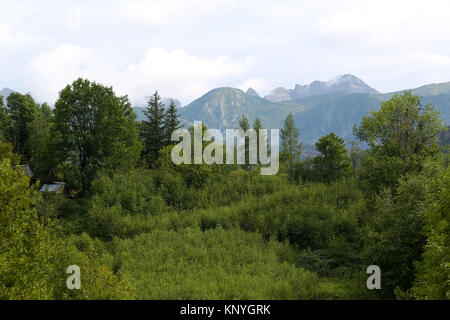 Green area of town of Zakopane and the Tatra Mountains can be seen - Stock Image