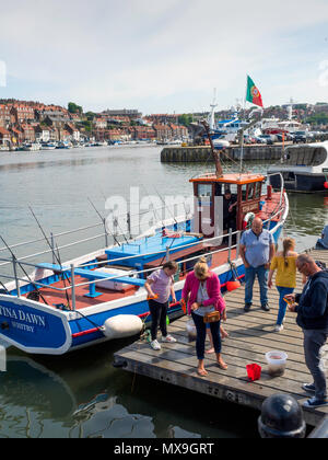 A family holidaymakers in spring sunshine crab fishing on a boat landing at New Quay in Whitby harbour - Stock Image