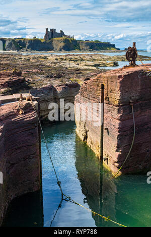Tantallon Castle from the tiny harbour at the Gegan rocks, Seacliffe Beach.  Near North Berwick, East Lothian, Scotland, UK - Stock Image