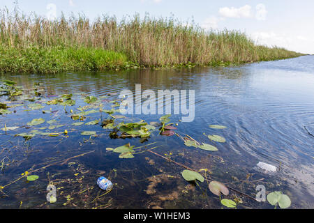 Miami Florida I-75 Interstate 75 Alligator Alley The Everglades canal grass saw grass marshes wetland ecosystem environment drai - Stock Image