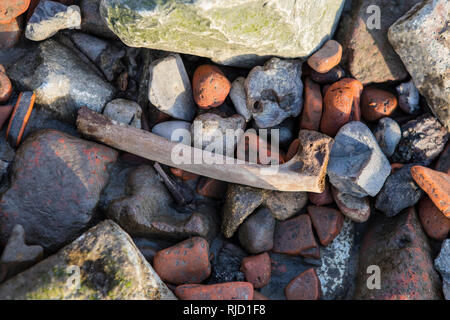 A bone among the stones of the shore of the River Thames in London, UK.  Seeing bones on the shore of the Thames is quite common - probably remains of - Stock Image