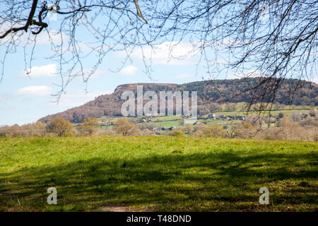 View of Bosley Cloud / Cloud end from farm fields on the Cheshire plain near Congleton Cheshire England UK - Stock Image