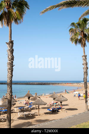 View of beach through palm trees at Costa Adeje, Tenerife, Canary Islands - Stock Image