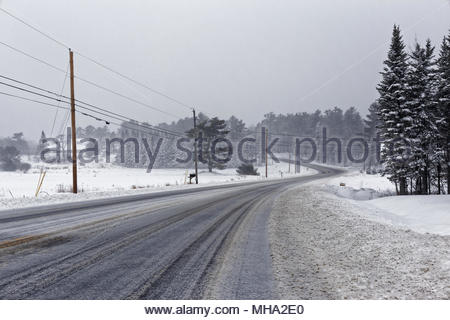 US Route 1 during a snowstorm, Warren, Maine, USA - Stock Image