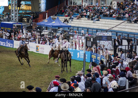 Festival de Doma y Folklore festival of bucking broncos and folklore traditional music, the largest in South America, held in Jesus Maria Argentina. - Stock Image