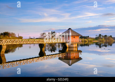 View over Cropston Reservoir and the draw off tower and gantry, Leicestershire, England, United Kingdom, Europe - Stock Image